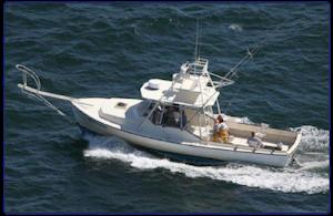 Rhode Island (RI) Fishing Charters